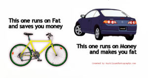 Fat 13 71 300x159 - Cycling and Your Health